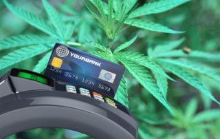 MMJ Credit Card Processing Company