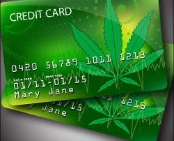 Best MMJ Marijuana Dispensary Merchant Services