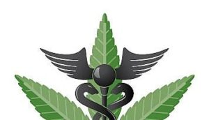Canadian Medical Marijuana Accept Credit Cards