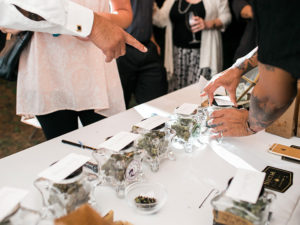 Canadian Marijuana Dispensary Merchant Services
